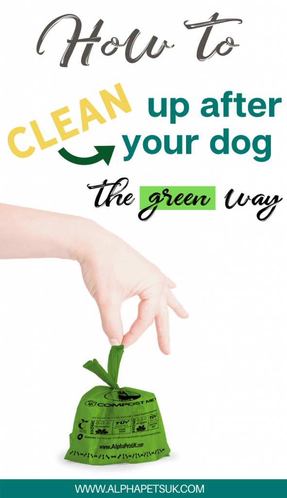 Eco-friendly Dog Poop Cleanup