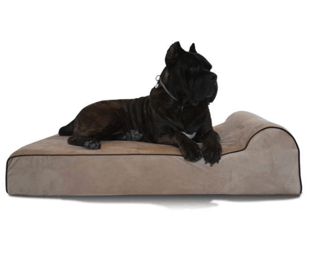 Bully Bed Durable Orthopedic, Washable & Waterproof Giant Big Dog Bed XXL