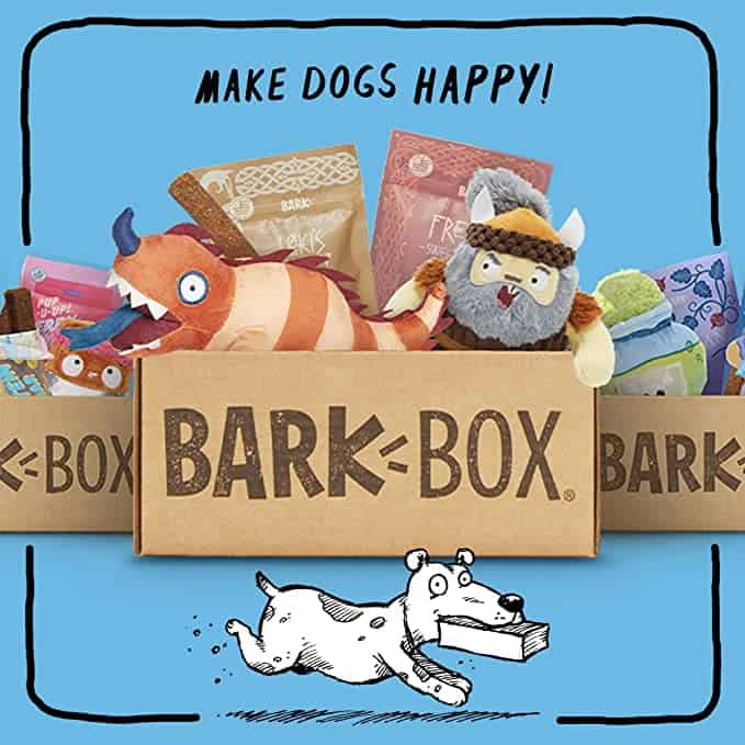 BarkBox Monthly Subscription Box   Dog Chew Toys, All Natural Dog Treats