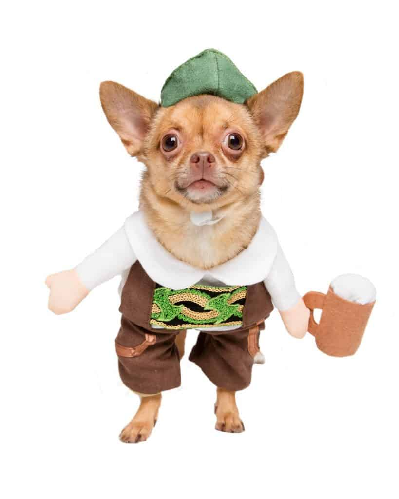 German Oktoberfest Dog Costume