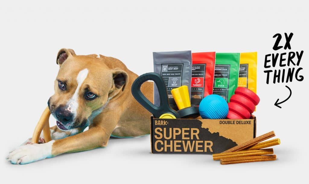 Super Chewer - Durable Dog Toys & Heavy Duty Treats Monthly Subscription Box