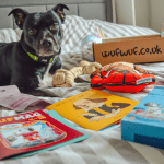 best subscription boxes for dogs europe uk