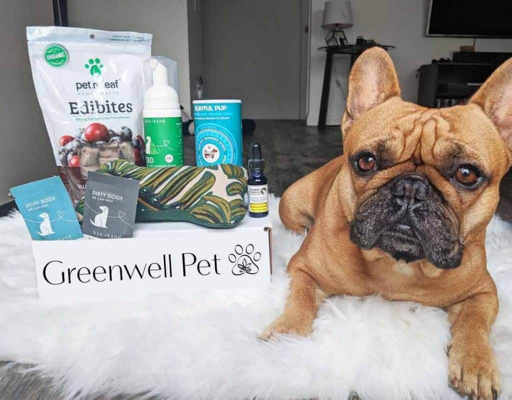Greenwell Pet Box: Wellness Picked Just for Your Dog Each Month