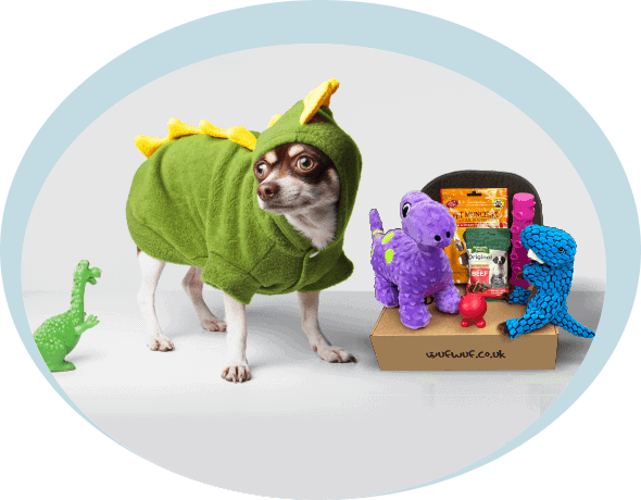 Wufwuf Surprise Box For Dogs With Toys & Treats - UK and Europe Delivery