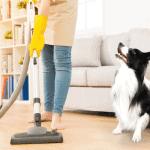 removing pet hair floor hoover