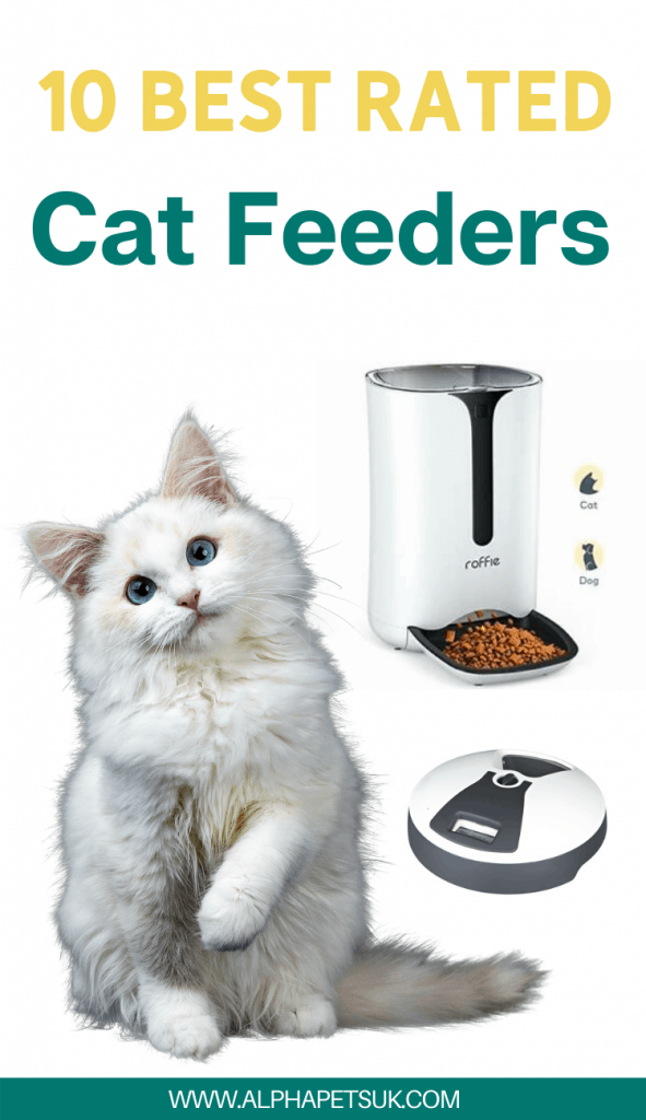 Best Automatic Feeders For Cats Top Rated Cat Food Dispensers For Dry Wet Food Alpha Pets Uk