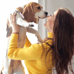 christmas gift guide pet owners