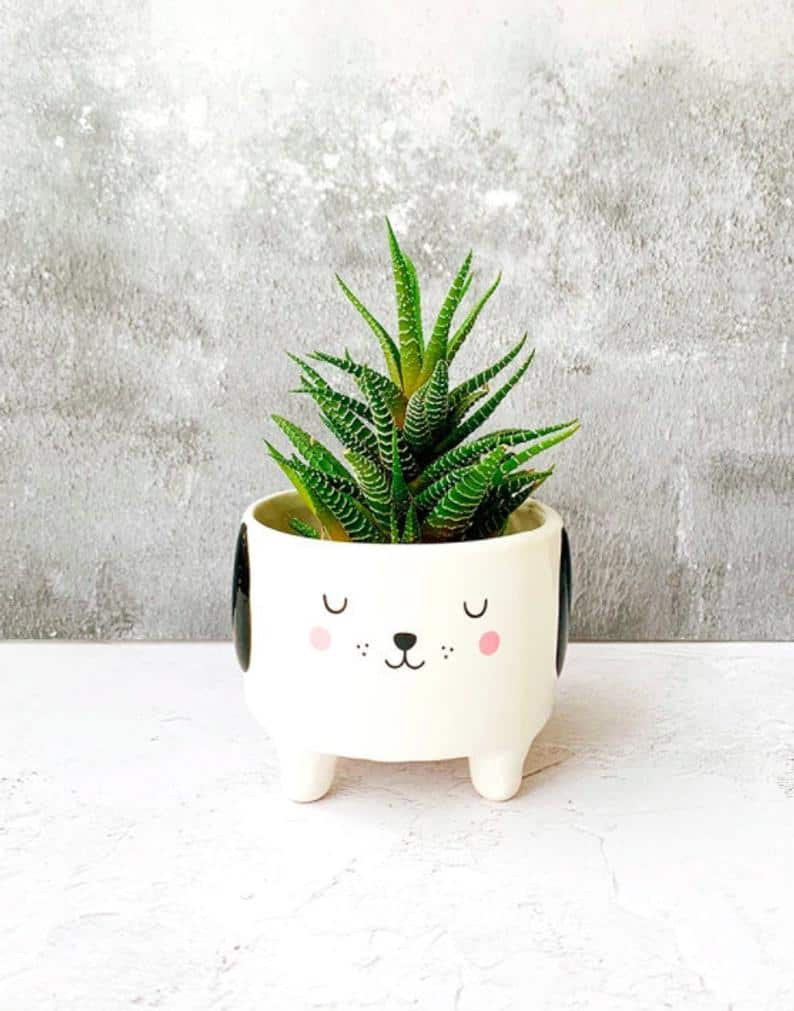 Dog Planter Pot for Cactus, Succulents Or Air Plants