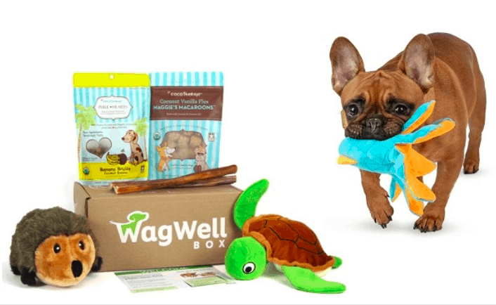 WagWell Box Organic and All-Natural Monthly Dog Box