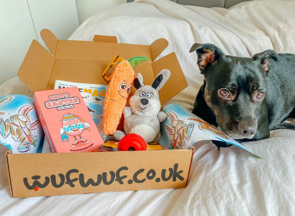 wufwuf dog subscription box uk review contents price